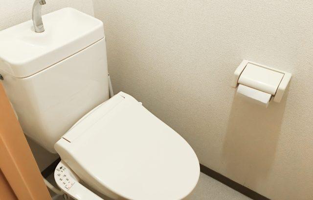 トイレの交換はDIYでもできるの?かかる費用や具体的な手順を解説